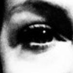 Profilbild von Sibylle Loidolt